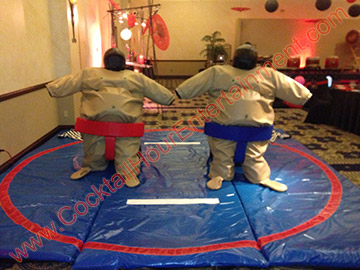 sumo suits-adults